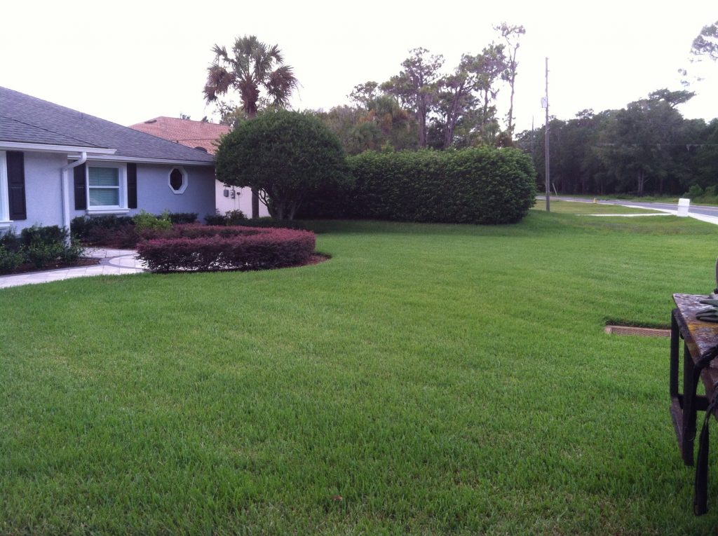 Superb Tampa Lawn Care Service
