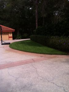 Spectrum Lawn and Landscape Empire Zoysia